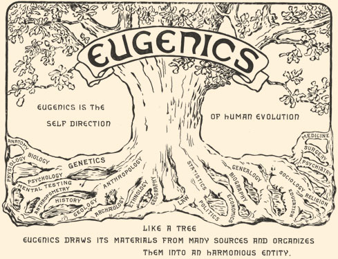 Eugenics, Ready or Not
